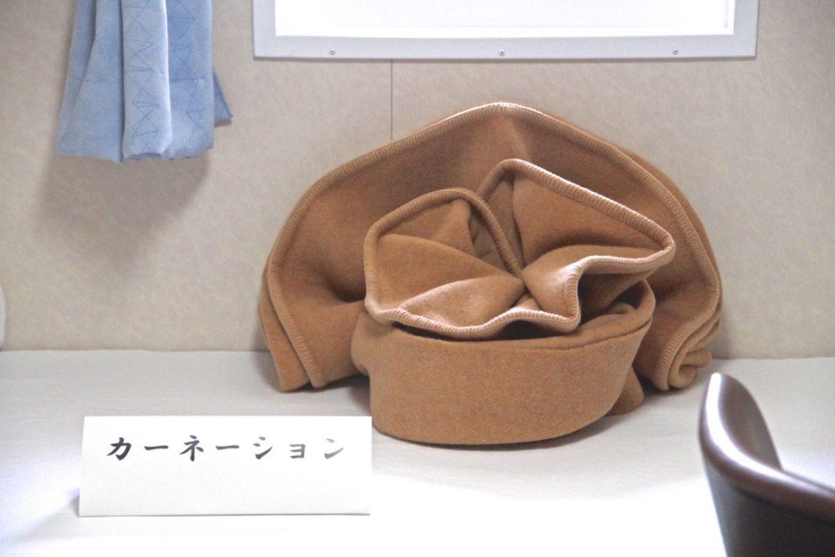 毛布アート(カーネーション)