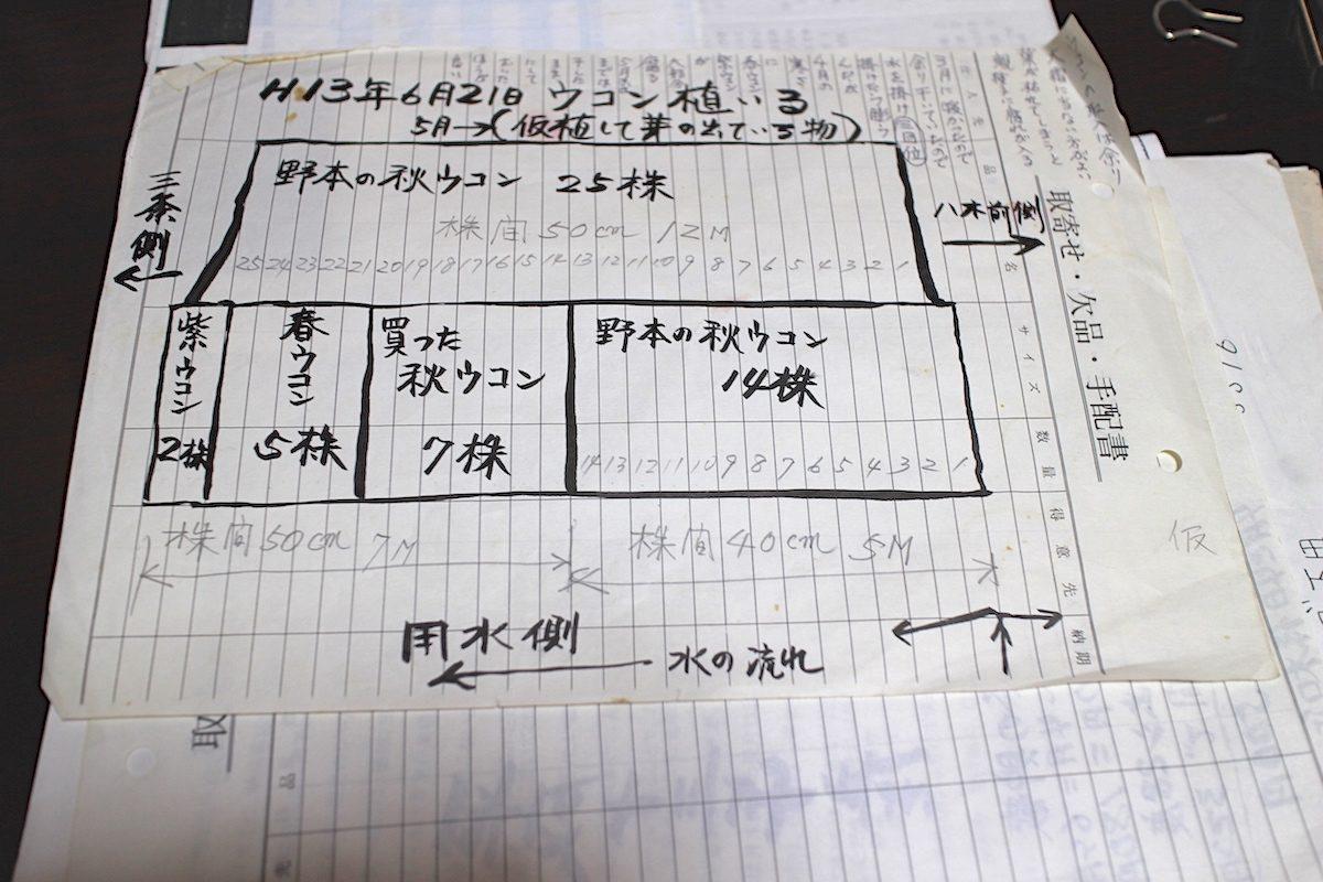 三条スパイス研究所 ウコン 山崎さん