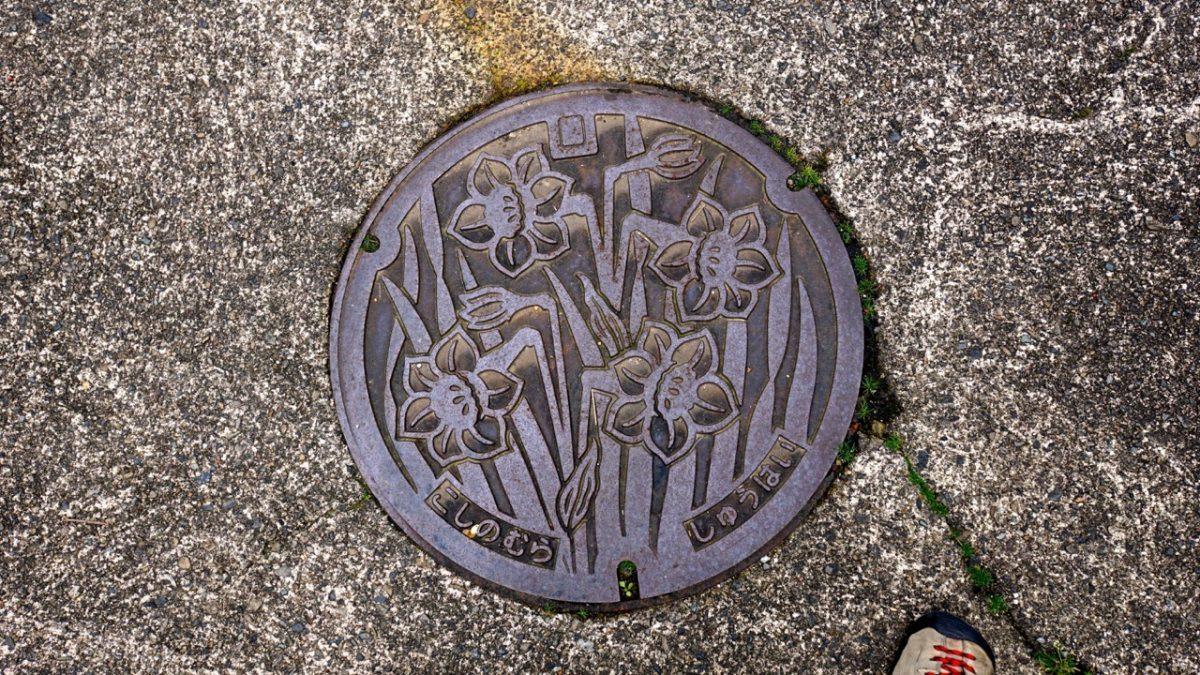 マンホールにも水仙の絵が描かれています。
