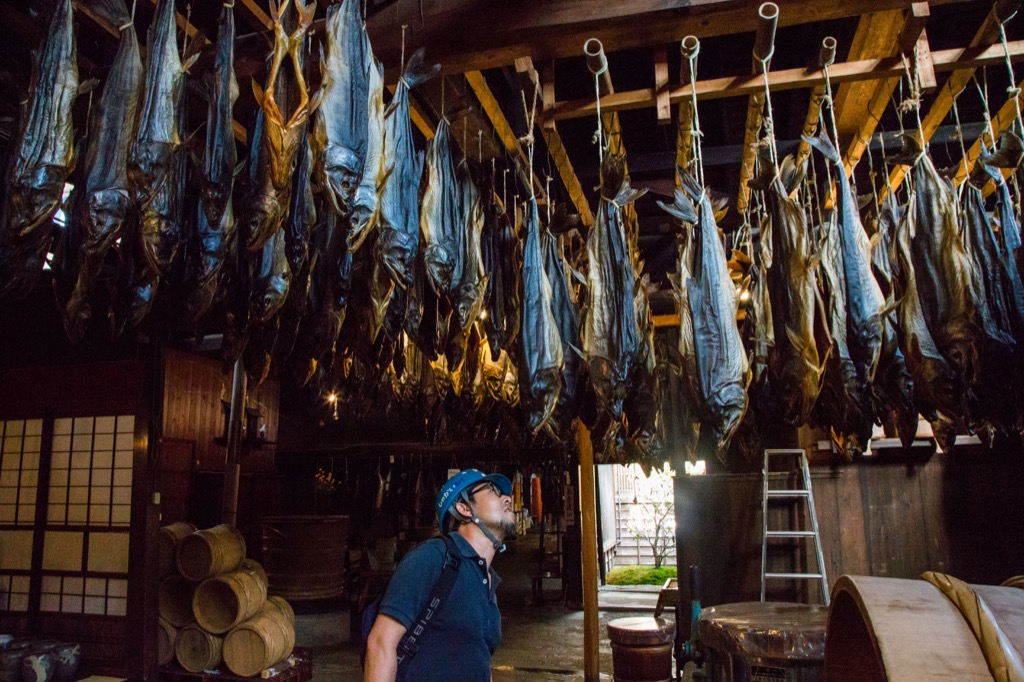 塩引き鮭イメージ