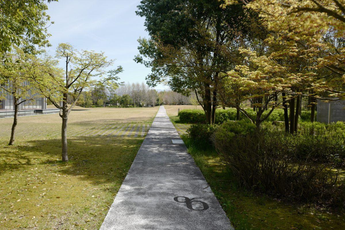 福井県立図書館の庭